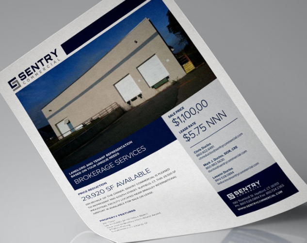 sentry commercial property flyer.